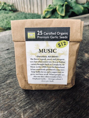 Music Premium Seed Pack - 25 Cloves