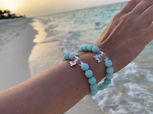 Amazonite & Crystal Quartz Healing Crystal Pick Your Charm Bracelet
