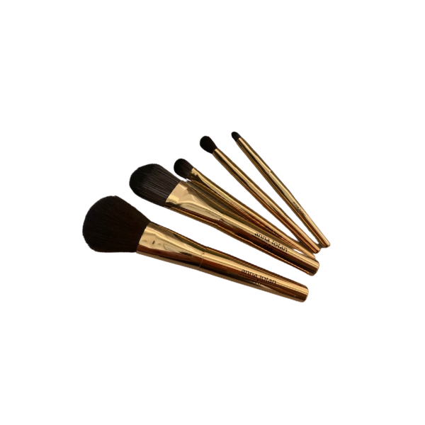 Anna Lotan Pro Makeup Brush Set