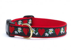 Feminine Ribbon Collars and Leashes