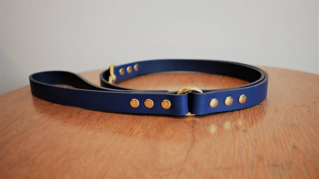 'Plain Dane' Leash - Coloured