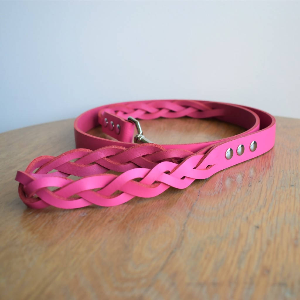 'Braid Envy' Leash - Coloured
