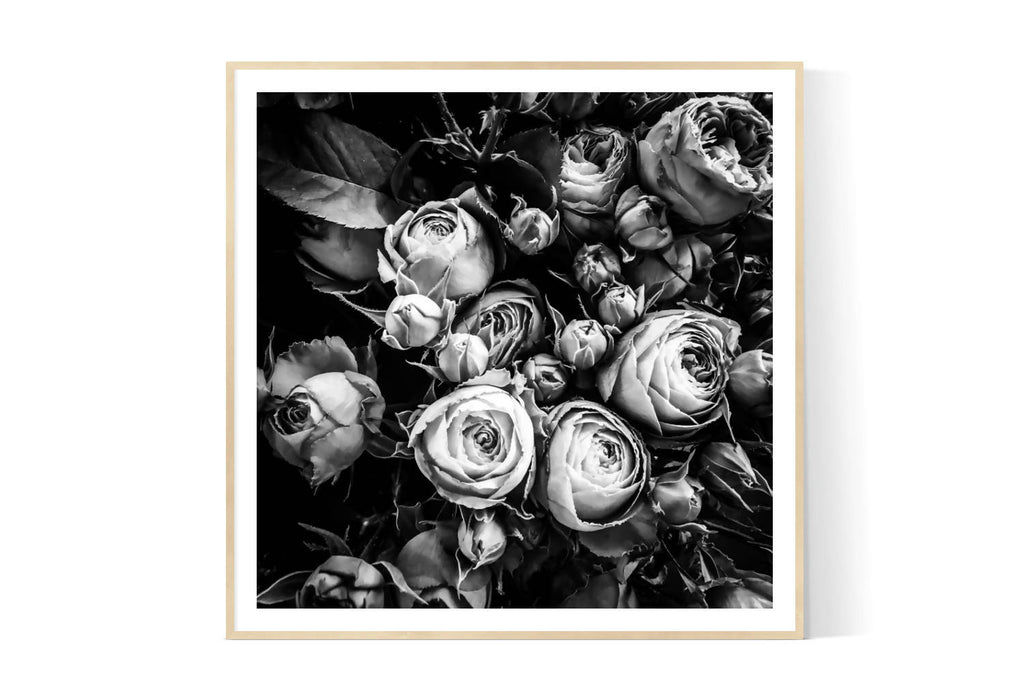 MOODY ROSES| Limited Edition Photographic Art