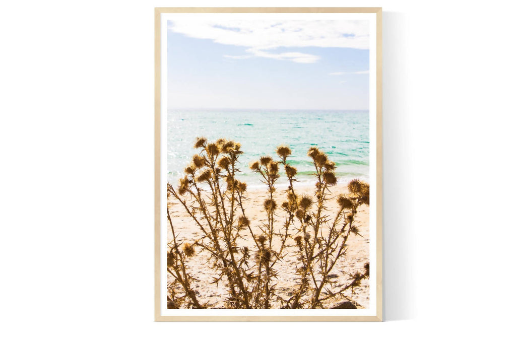 LASTING | Limited Edition Photographic Art