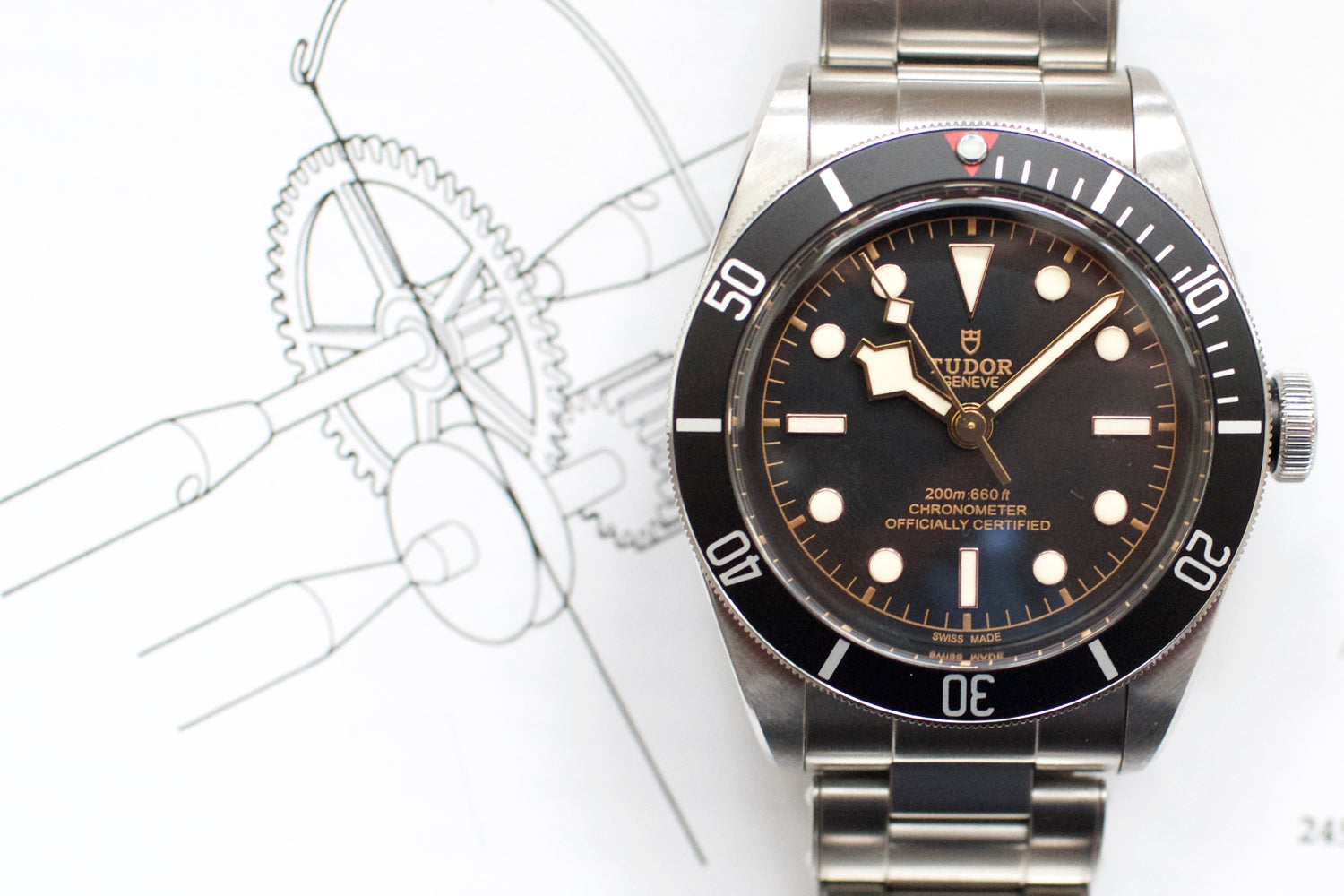 Tudor Black Bay 41mm Automatic 79230N