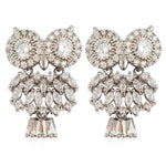 TB025 CHRISTMAS OWL EARRINGS