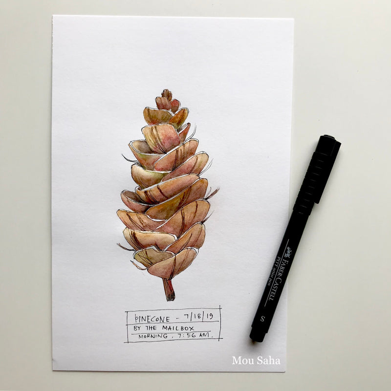 Pinecone with Pitt Artist Pen