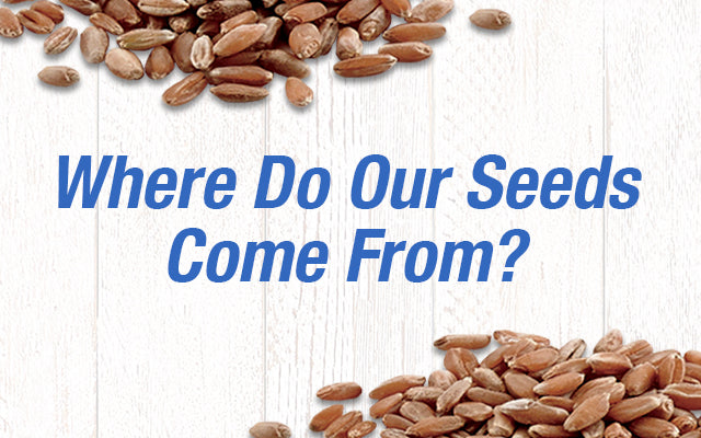 Where Do Our Seeds Come From?