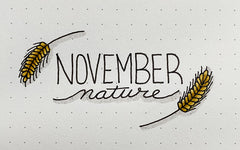 Bullet Journal Doodles: November Nature