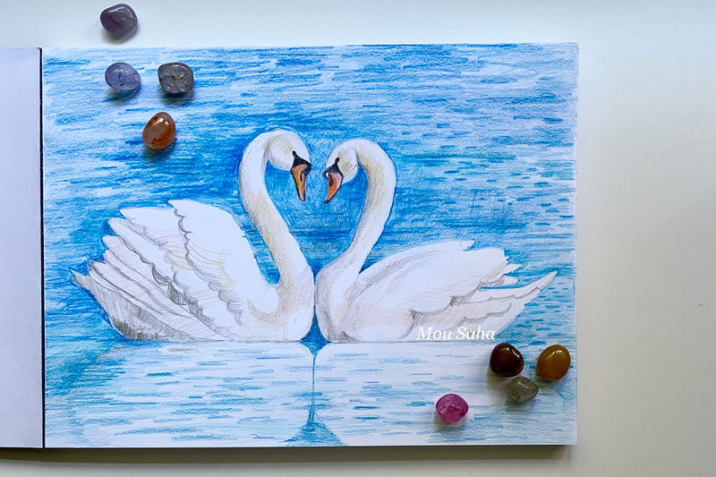 Swan sketch with stones
