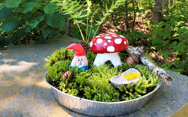 DIY Gnome and Fairy Garden Craft for Kids