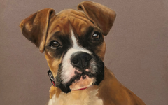 Pitt Pastel Puppy Tutorial