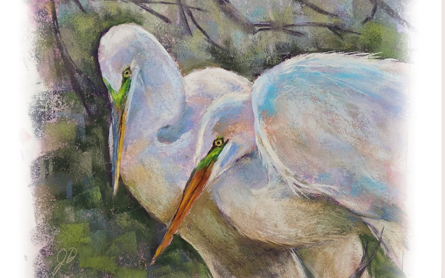 Polychromos Pastel Tips and Techniques