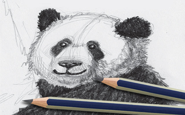 Panda sketch with Goldfaber Graphite Pencils