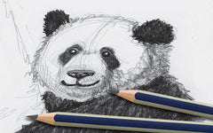 Drawing for Kids! - A How to Draw and Sketch Graphite Guide
