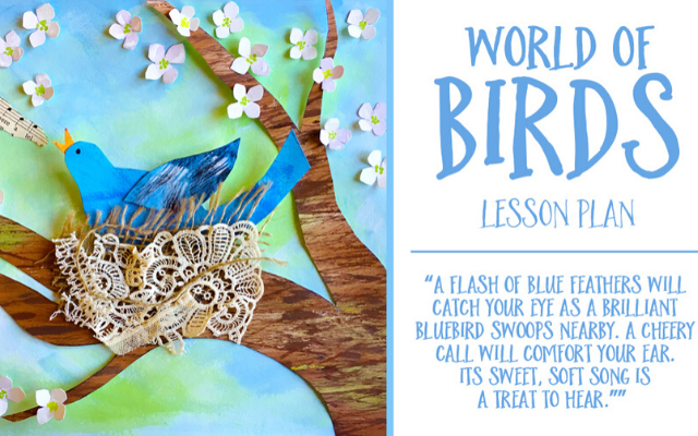 World of Birds Lesson Plan