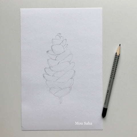 Pinecone Sketch with Graphite Pencil Grip