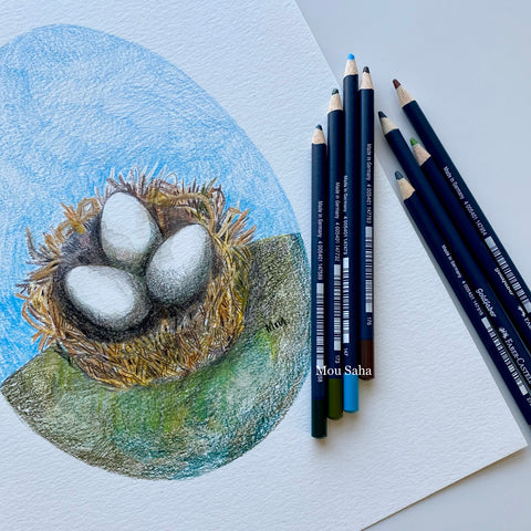 Complete birds nest sketch with Goldfaber Color Pencils