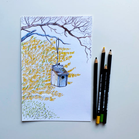 Bird house sketch with Goldfaber color pencils