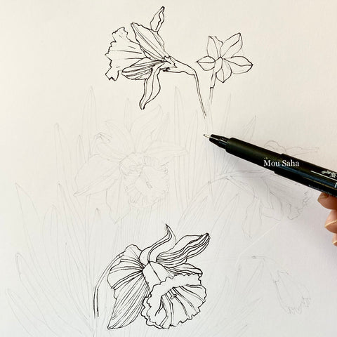 Daffodil sketch with Pitt Artist Pen