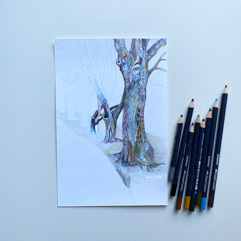 Sketch of tree with Goldfaber Color Pencils