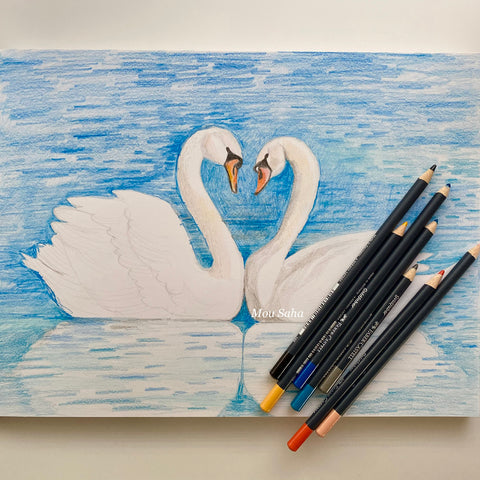 Swan sketch with Goldfaber Color pencil
