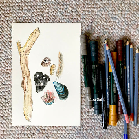 Watercolor Sea Shells and Watercolor Pencils and Pitt Artist Pens