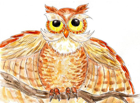 Owl watercolor painting
