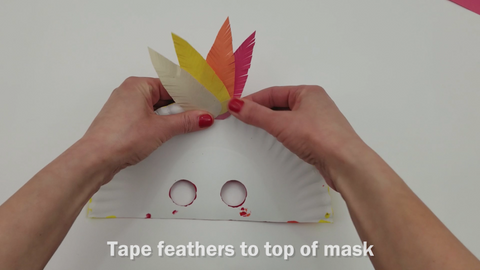 Feathers taped to top of mask