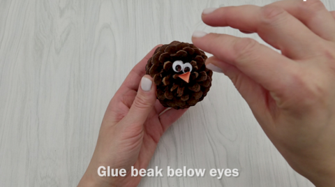 Pinecone with Googly Eyes and Beak