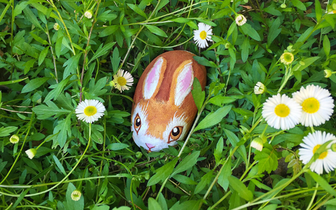 Rock painted as bunny in grass