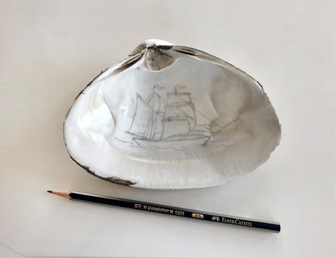 Sea Shell with Ship Drawing