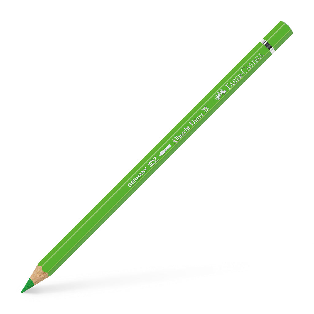 Albrecht Dürer® Artists' Watercolor Pencil - #166 Grass Green - #117666