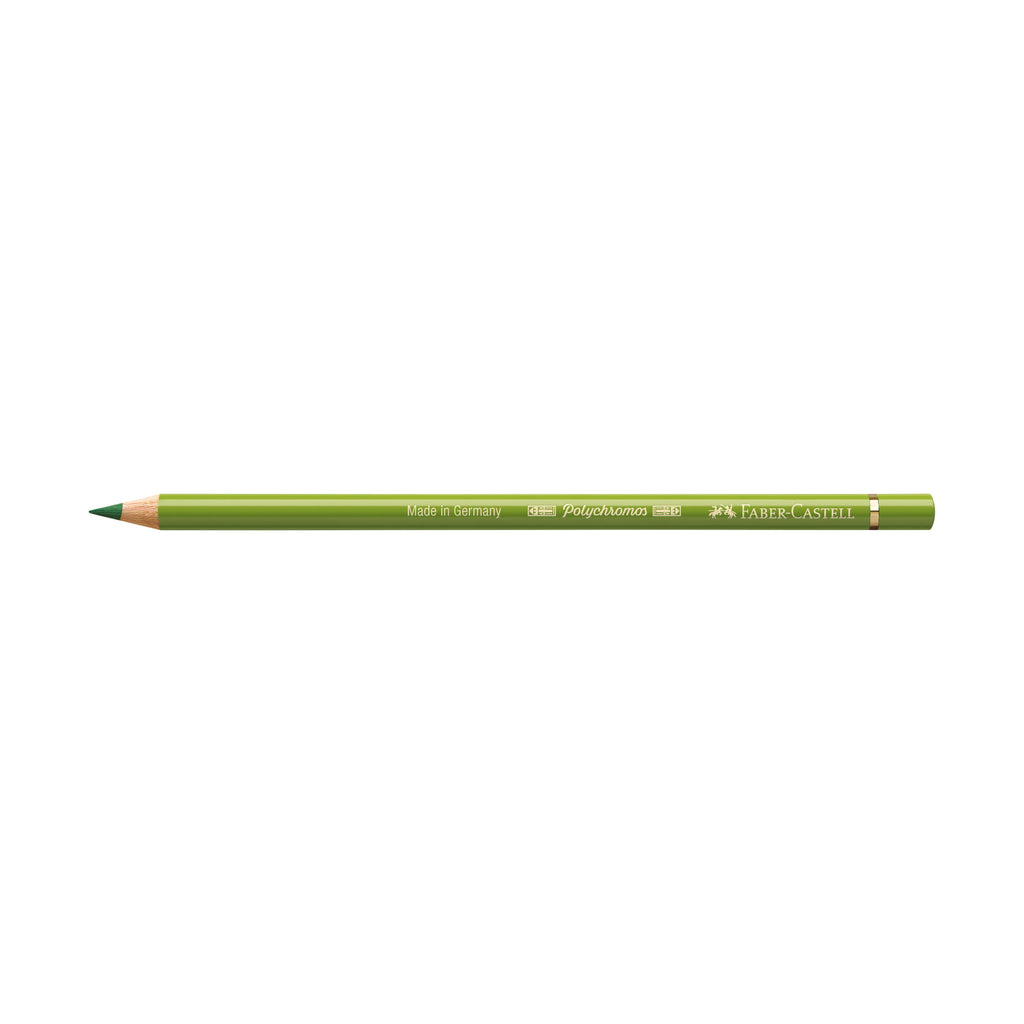 Polychromos® Artists' Color Pencil - #168 Earth Green Yellowish - #110168