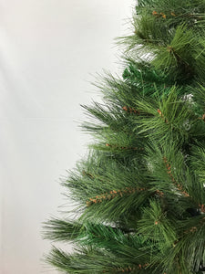 New Zealand Pine Christmas Tree