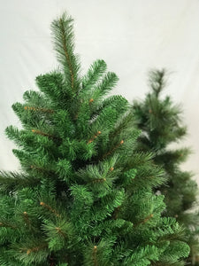 Colorado Christmas Tree (Instant Shape)