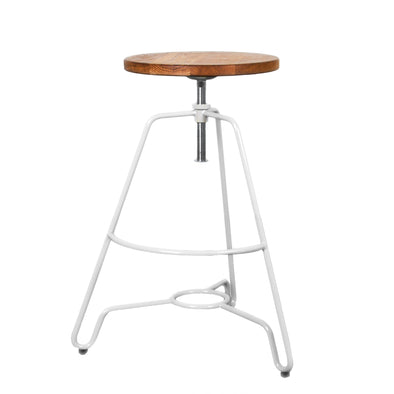 Briggs Adjustable Stool