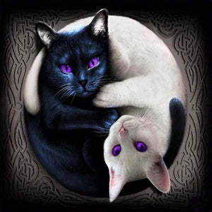 Yin and Yang Cat-DIY Diamond Painting