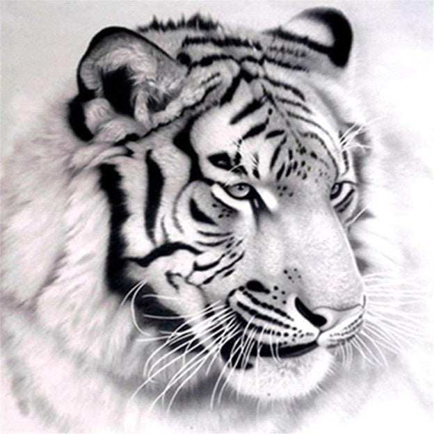 Tiger Head Portrait-DIY Diamond Painting