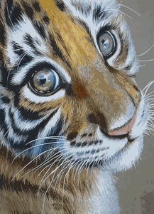 Teary Eyed Tiger