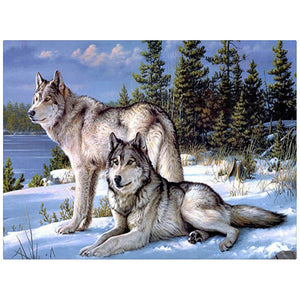 Lonely Wolf Couple-DIY Diamond Painting