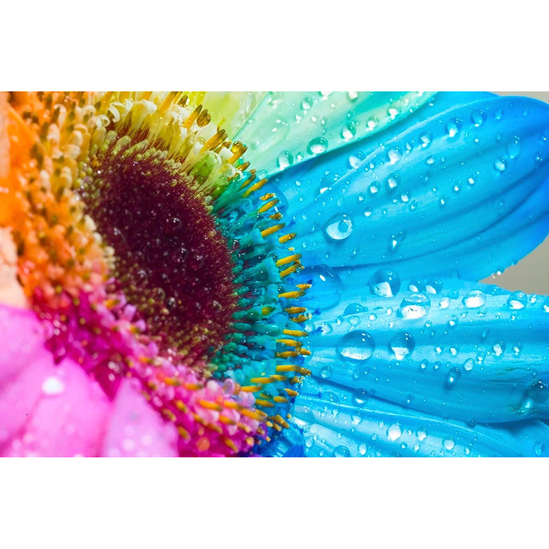 Rainbow Sunflower-5D DIY Diamond Painting , Diamond Painting kit