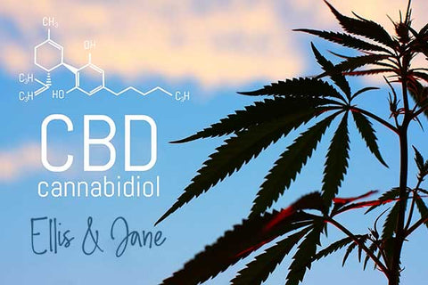 is cbd without thc legal