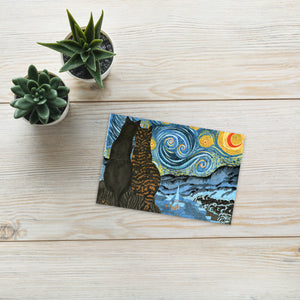 Meow Meow and Little Meow Starry Night Standard Postcard