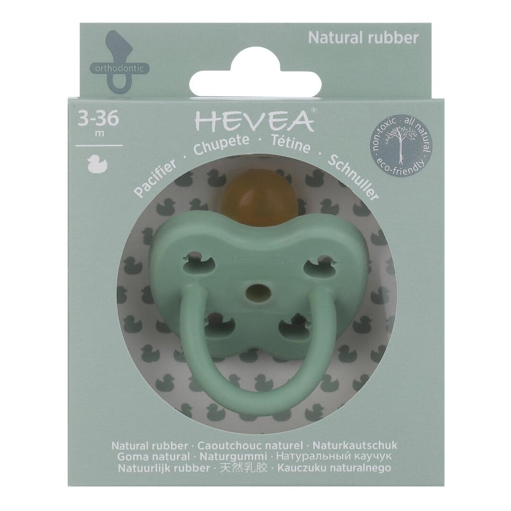 Hevea Dummy | Pistachio | White Fox & Co
