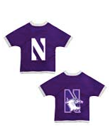 NCAA Northwestern University Pet Gear