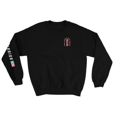 Car clothing sweater