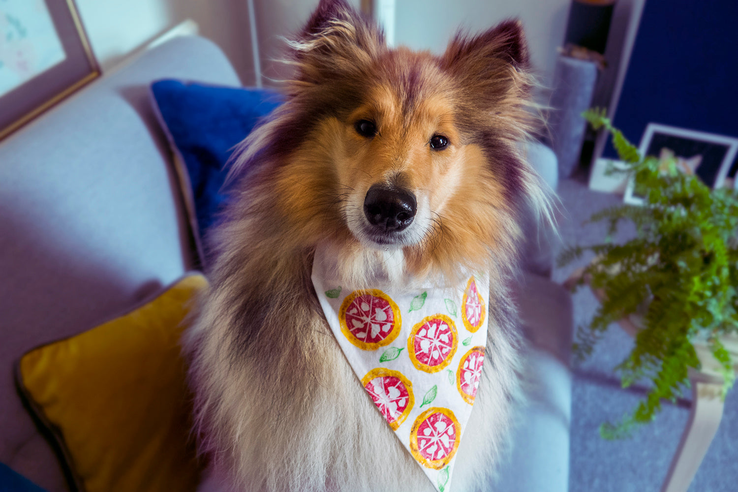 collie dog with handmade cotton bandana with pizza