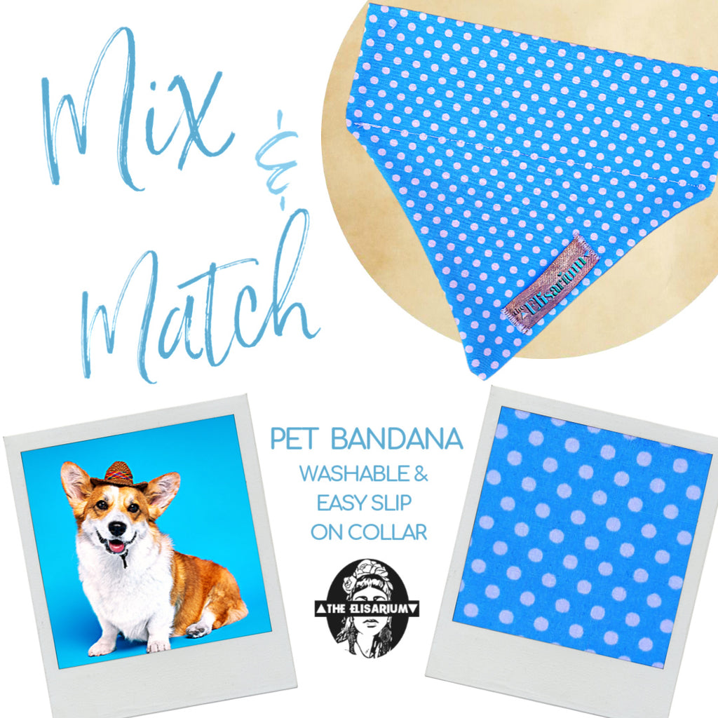 Dog Bandana - light blue & Dots