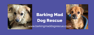 BarkingMadGoodies